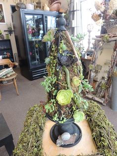 Succulent Topiary Created by El Dorado Hills Florist. Workshops coming this Fall, hands on