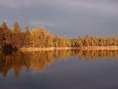 Luontoa, retkiä, leipomuksia ja reseptejä. Tai mitä nyt taskuistani sattuukaan löytymään. Luontoilevan herkkusuun blogi. Finland, Landscapes, River, Photography, Outdoor, Paisajes, Outdoors, Scenery, Photograph