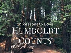 """When I tell people I was born in Humbold County, California, they say """"Oh, where they grow all the pot?"""" Folks, Humboldt is much more than that!"""