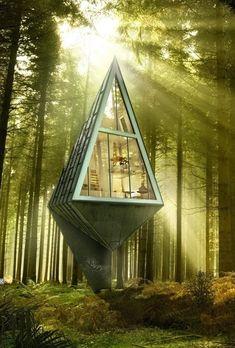 숲속에 숨는 집.jpg