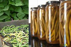 Cómo conservar verduras encurtidas (pickled vegetables): pickle de judías verdes {septiembre, mes de las conservas con Ventanas Verdes} Pickles, Asparagus, Cucumber, Vegetables, Recipes, Flower, Green Beans, Legumes, Preserves