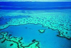 Great Barrier Reef - Tourism Queensland