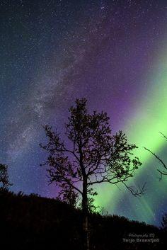 Aurora+&+Milky+Way+by+Terje+Brannfjell+on+500px