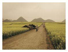 Luoping 04 Yunnan CHINA.jpg