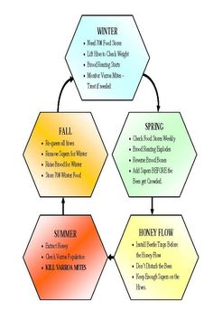 Knowing the Seasons of Bee Keeping can make all the difference! #Bees
