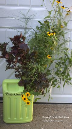 Pass-Along Plant Tote ~ DIY a plant tote from a kitty litter container and share your garden plants with friends and family! http://ourfairfieldhomeandgarden.com/diy-pass-along-plant-tote/