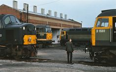 D1534,D1581,D252 and D5595 at Hornsey MPD on 15th June 1969.(George Woods)
