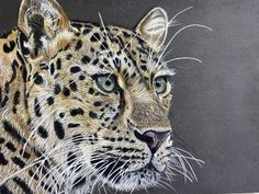 """Friday Art Cat: """"Cheetah"""" by Reanne House   Hi everyone, Today's entry in the Friday Art Cat comes from Reanne House: Reanne is a 26 year old self taught Artist from Hertfordshire who has experimented with a range of mediums. Art and Animals are a massive passion of hers, trying to capture their expression and emotion through her artwork is so important to […]   #Katzenworld, #Cat, #Cats, #Cute, #Funny, #Katze, #Katzen, #Kawaii, #Pets, #ねこ, #猫 #TheFriday"""