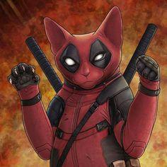 Whats purrr ing Deadpool Art, Deadpool Funny, Deadpool Stuff, Cat Superhero, Baby Animals, Cute Animals, Gato Animal, Nyan Cat, Super Cat
