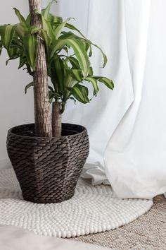 [Déco] Notre salon gris bleu bois – A Kutch Life – Travel & Vanlife Felt Ball Rug, Interior Styling, Vase, Green, Plants, Home Decor, Style, Grey Lounge, Blue Grey