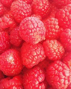 Raspberries #raspberries #keto #ketose #loversoffood #website #foodblog #blog #eetblog #koolhydraatarm #koolhydraatarmdieet #koolhydraatvrij #lowcarb #nocarbs #recept #lunch #recepten #gezond #healthy #health #healthyfood #gezondeten #gezondelevensstijl #fit #fitdutchie #summerbody #afvallen #eatclean #inspiration #weightloss #foodporn by loversoffoodd