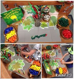 A variety of activities related to The Very Hungry Caterpillar in an Early Years classroom. Hungry Caterpillar Activities, Very Hungry Caterpillar, Minibeasts Eyfs, Butterfly Life Cycle, Chenille, Nature Crafts, Kindergarten Activities, Early Childhood, Crafts For Kids