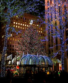 NYC. Rockefeller Center Christmas Tree, it was so beautiful at Christmas!