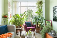 Welcome to a colorful world Indoor Garden, Indoor Plants, Sweet Home, Outdoor Furniture Sets, Outdoor Decor, Decoration, Boho Decor, Future House, Home Office