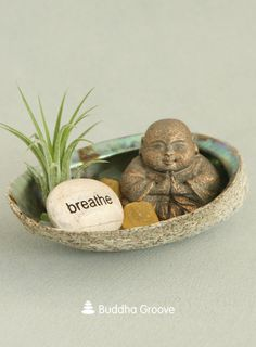 """This abalone shell terrarium is a peaceful reminder of the ocean. Be still and let your thoughts wander in and out like waves on the shore. Along with a relaxing air plant, this terrarium includes a meditating Buddha statute and a """"Breathe"""" rock for added inspiration."""