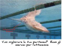 Vuoi migliorare la tua partenza? Ecco gli esercizi per l'attenzione | http://www.nuotomania.it/public/blog/index.php/2013/03/esercizi-partenza-nuoto/ | Gli esercizi che seguono si riferiscono principalmente al metodo della variazione dei carichi e si propongono come scopo principale di indirizzare l'attenzione dell'atleta sulla zona locomotoria impegnata nelle...