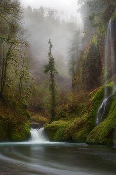 Columbia River Gorge, Oregon Miles Morgan