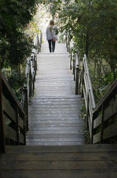 Climbing Telegraph Hill:  Filbert Steps near Coit Tower