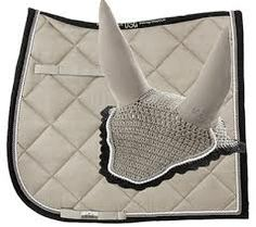 mattes dressage pads - Google Search
