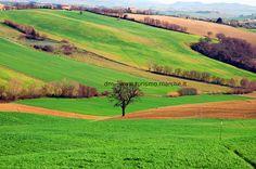 Marche Landscape - Italy  www.turismo.marche.it