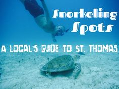 A Local's Guide to St. Thomas Snorkeling Spots #CaribbaConnect