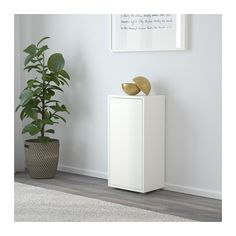EKET Cabinet with door and 2 shelves  - IKEA Size 50$  13 3/4x9 7/8x27 1/2 ""