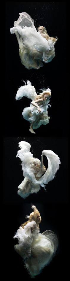 Zena Holloway....Underwater Photographer Extraorinaire #underwater #inspiration #photography