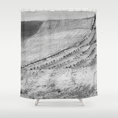 Cereal fields. BN Shower Curtain by Guido Montañés - $68.00