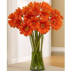 Have I told you how much I just love Orange Gerbera Daisies, no? OK well now you know ; Long Stem Flowers, Orange Flowers, Fresh Flowers, Silk Flowers, Wedding Reception Flowers, Floral Wedding, Wedding Ideas, Lace Wedding, Dream Wedding