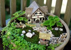 We decorated our fairy garden with various found treasures from our summer adventures. The moss is from the stonewall in our backyard.     Click on the pic for more tips and ideas.  http://www.fairygardendesign.com/how-to-videos