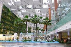 Changi Airport of Singapore