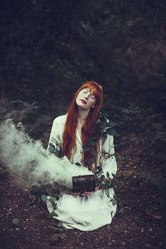 forest magic
