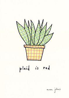 plaid is rad (houseplant) • marc johns