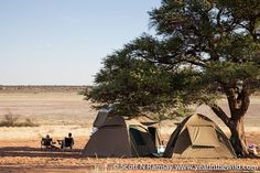 Mpayathutlwa pan in Mabuasehube on the Botswana side of the Kgalagadi Kindness Of Strangers, Africa Travel, Amazing Destinations, Campsite, Solo Travel, Outdoor Gear, Tent, To Go, African