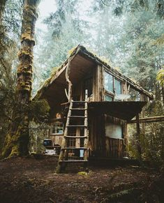 Awesome Tree House Ideas for Your Backyard. Playing in tree houses always fascinating. It is too much fun to build your own tree house when you are a child. Ideas De Cabina, Cabin In The Woods, Rustic Backyard, Backyard Ideas, Backyard Treehouse, Forest House, Forest Cabin, Woodland House, Forest Mountain