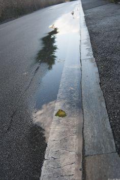 la strada della foglia by Clay Bass on 500px