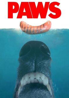 "LOL....yep, food and greyhounds & whippets resembles ""Jaws"" for sure."