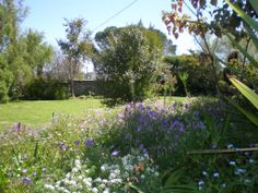 The back Garden of the property