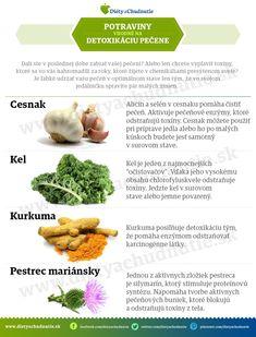 Aloe vera a jej účinky na chudnutie a zdravie človeka - Ako schudnúť pomocou diéty na chudnutie Aloe Vera, Food And Drink