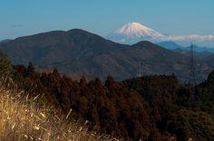 A Fuji Morning