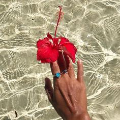 Give me tropical flowers clear water & ocean inspired jewels any day.  @elaineabonal #saltysaturday #summerlovepr