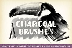 Charcoal Brushes by The Artifex Forge on @creativemarket