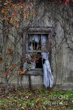 Tattered curtain at abandoned house Old Buildings, Abandoned Buildings, Abandoned Places, Window View, Window Art, Open Window, Abandoned Mansions, Belle Photo, Old Houses