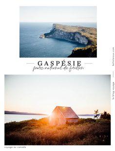 voir le parc national de forillon en Gaspésie Road Trip, Nature Landscape, Les Continents, Blog Voyage, North America, World, Travel, Paris, Inspiration