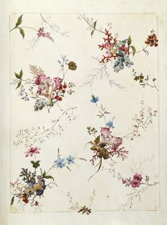 Design from an album of designs for printed textiles by William Kilburn. Botanical Art, Botanical Illustration, Textile Prints, Textile Design, Motif Floral, Floral Prints, Textures Patterns, Print Patterns, Royal College Of Art