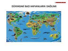 www.erguven.net-Dunya_Haritalari_(212).JPG (960×720)