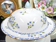 Shelley Muffin Warmer Covered Butter Dish Blue Floral Design | eBay