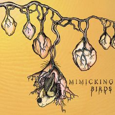 Mimicking Birds- s/t.  Such a great band.