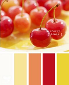 White, light butter, coral, bright red, bright mustard yellow.