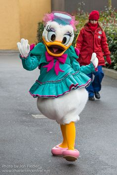 Daisy Duck - Feb 2014 - Character fun in Production Courtyard